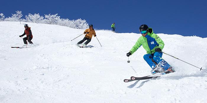 tsugaike ski lessons